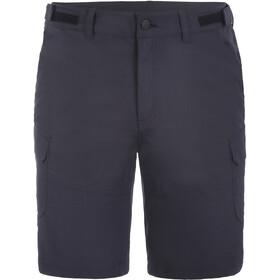 Icepeak Braswell Shorts Men, grijs